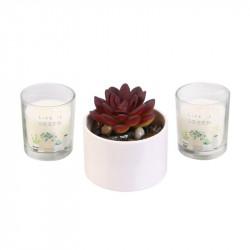 Grossiste bougie x2 et plante artificielle Little Market