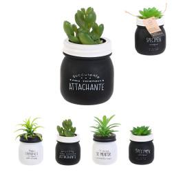 Grossiste plante artificielle dans un pot en verre spécial humeur