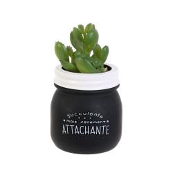 Grossiste plante artificielle dans un pot en verre spécial humeur noir