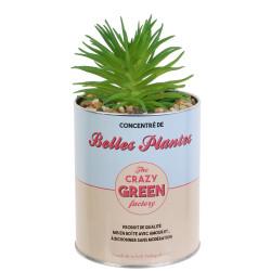 Grossiste plante artificielle cactus dans un pot en métal beige