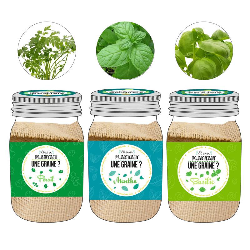 Grossiste graine à planter aromates dans un Mason jar