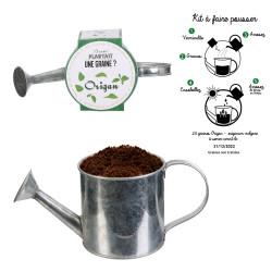 Grossiste graine à planter aromates dans un arrosoir en métal