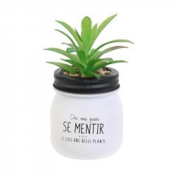 Grossiste plante artificielle dans un pot en verre spécial humeur blanc