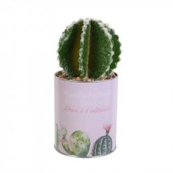 Grossiste plante artificielle cactus dans un pot en métal rose