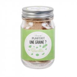 Grossiste graine à planter aromates dans un Mason jar vert clair