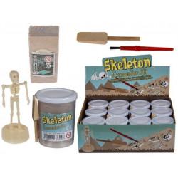 Grossiste kit squelette homme à gratter