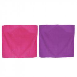 Grossiste et fournisseur. Torchon microfibre aimanté x 2 rose et violet