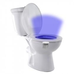 Motion detection toilet light