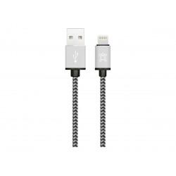 Set of 2 Lightning charging...