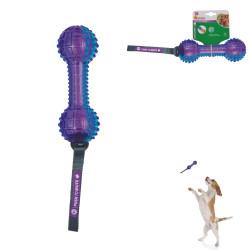 Grossiste Jouet haltère sonore pour chien - bleue