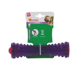 Grossiste Stick à friandises violet pour chien - taille S