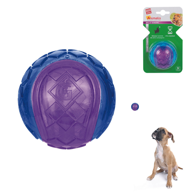 Grossiste Balle sonore violette pour chien - taille M