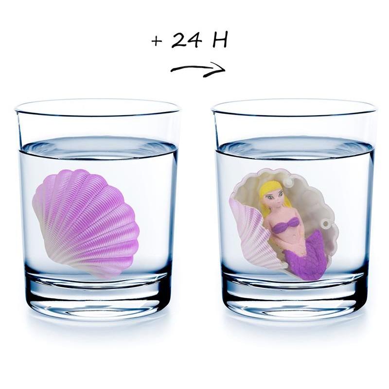 Grossiste et fournisseur. Coquillage magique violet avec sirène